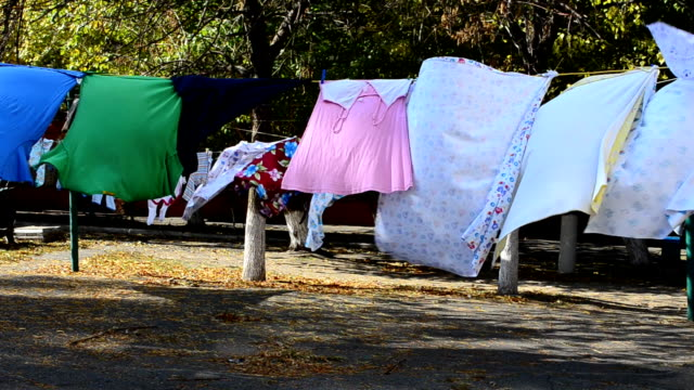 Drying of linen. video