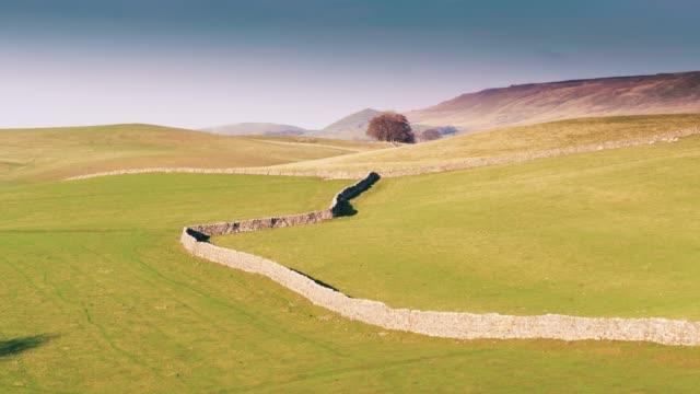 ヨークシャー - ドローン ショットの羊フィールドを囲む空積み壁 - 石垣点の映像素材/bロール