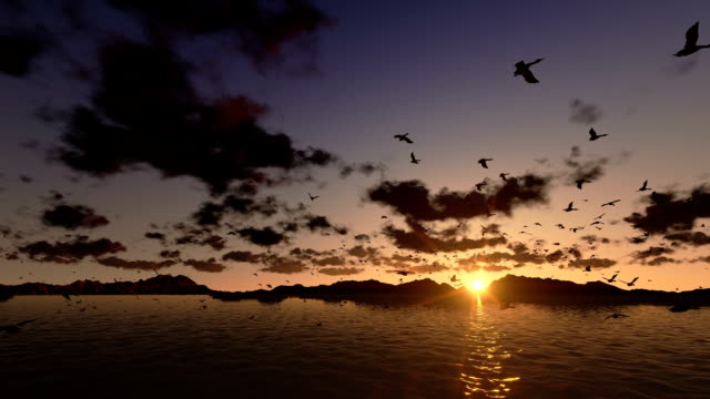 Ducks flying, timelapse clouds with sea and mountain ridge video