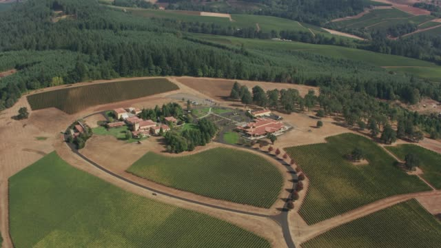 Dundee Hills,   Aerial view of Oregon's wine country.