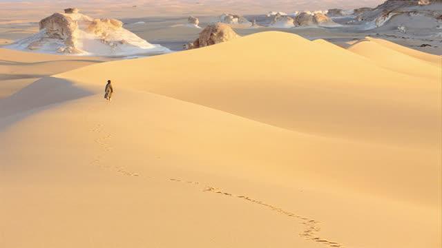 дюна в сахаре - египет стоковые видео и кадры b-roll