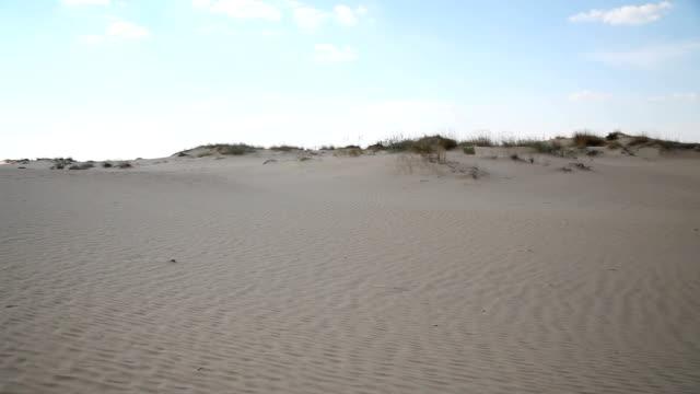 dünen mit vegetation in der wüste - afrikanische steppe dürre stock-videos und b-roll-filmmaterial