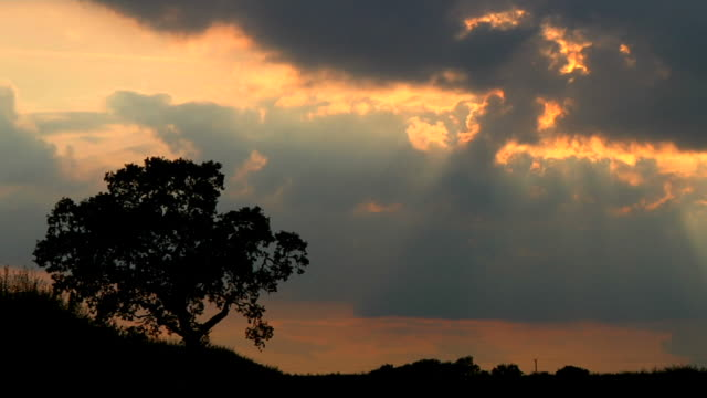 TIMELAPSE: Dusk sun beams video
