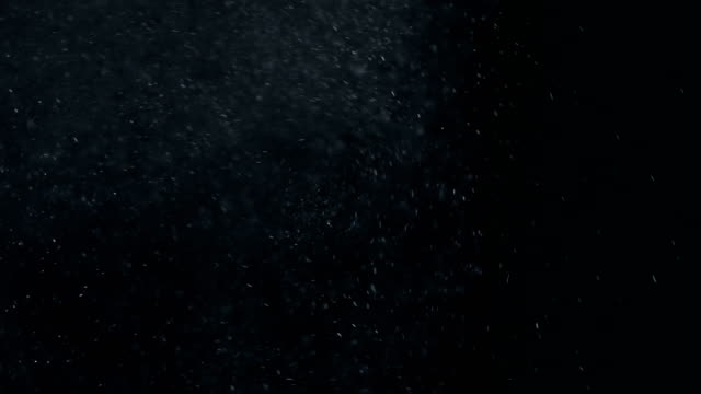 dust particles background - дуть стоковые видео и кадры b-roll