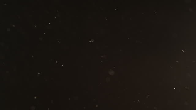 vídeos de stock e filmes b-roll de dust particles background white ash flying dark - cinza