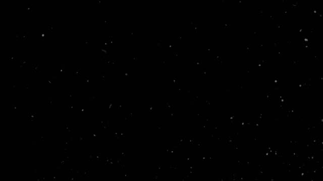 Dust Particles Moving Up on Black Background Looped Dust Particles Moving Up on Black Background Looped. dust stock videos & royalty-free footage