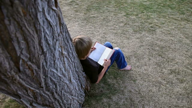 Dynamic Shot of boy reading book by tree  leaning stock videos & royalty-free footage