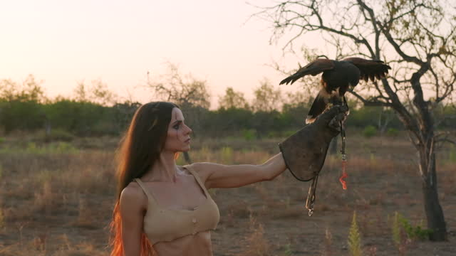 Eagle flies and sits on glove where the woman holds a piece of meat