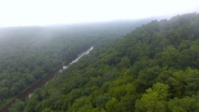 colpo di drone mattutino di acqua del fiume che si muove attraverso la foresta e la valle della montagna - monti appalachi video stock e b–roll