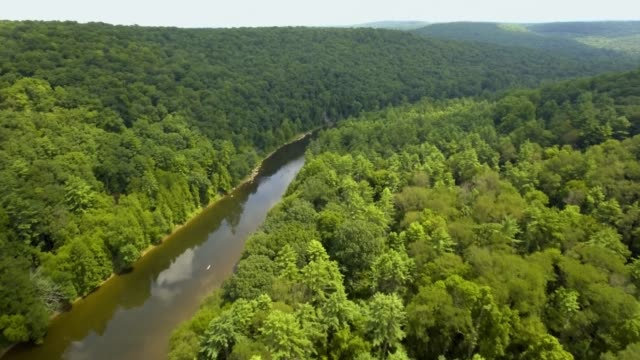 Early Morning Drone Shot of River Water Moving Through Forest and Mountain Valley