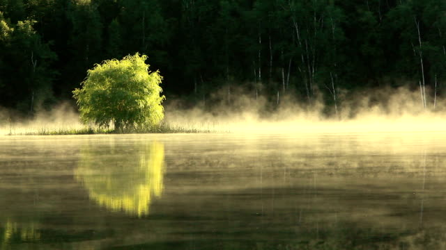 Early morning mist rising and glowing from lake surface video
