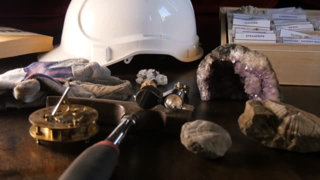 Earth Geology Science of paleontology conceptual desk setup Earth science geologist who works in the field of paleontology is known as a paleontologist and studies various fossils from prehistoric times. animal skeleton stock videos & royalty-free footage