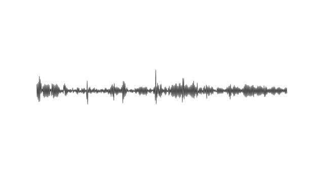 earthquake sound waves - attrezzatura per la musica video stock e b–roll