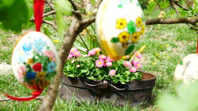 Easter eggs hanging on the twig in the garden. Panning. Rack focus. video