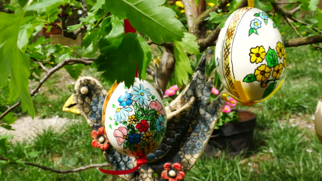 Easter eggs hanging on the twig in the garden. Panning. video