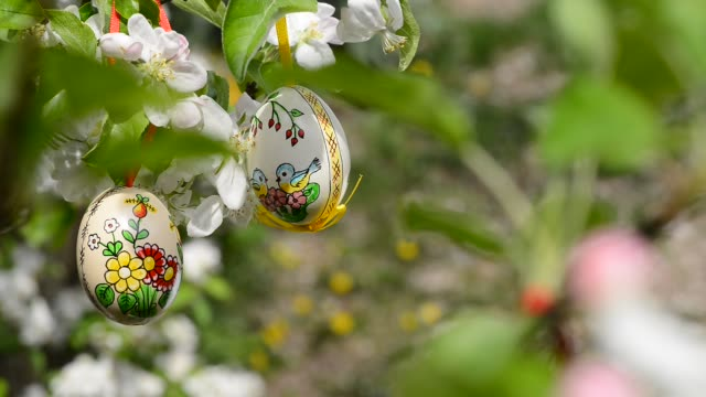 Easter eggs hanging on the twig of apple tree in the garden video