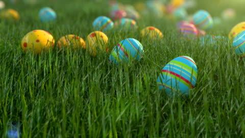 vídeos y material grabado en eventos de stock de huevos de pascua en la hierba. los huevos de pascua se deslizan por la ladera cubierta de cereales verdes. clima positivo soleado. - ornamentado