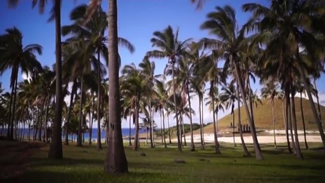 easter island polynesia chile - archeologia video stock e b–roll