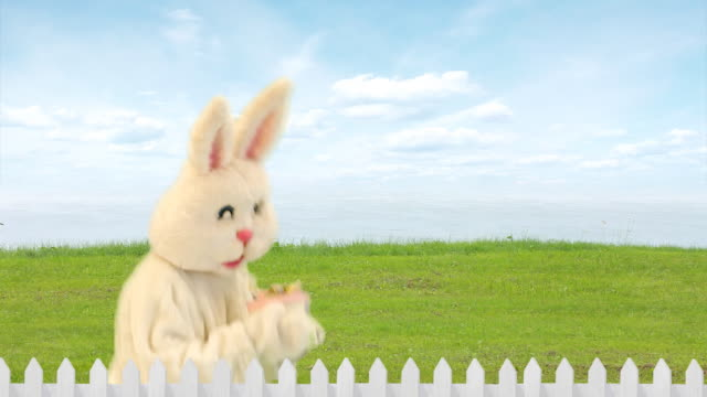 Easter Rabbit Gift video