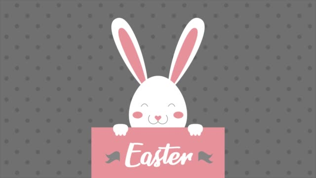 Easter text, animated footage in 4K. Close up text and rabbit on gray background. video