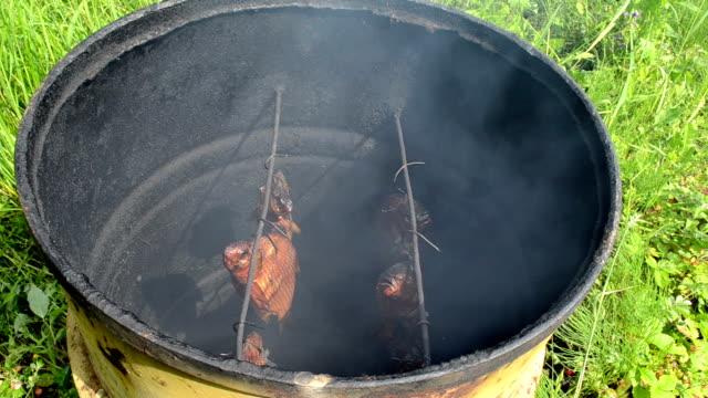 ecologic fish hang smoke video