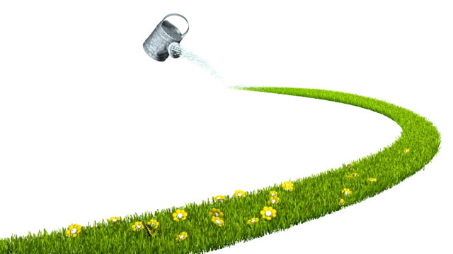 Ecological concept. Watering can, growing grass, flowers and butterflies.