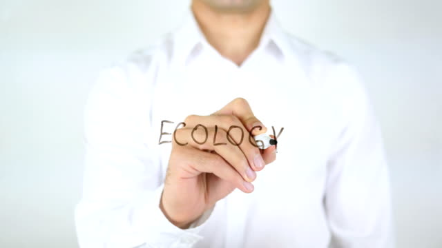 Ecology, Man Writing on Glass video
