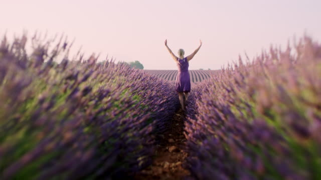 WS  Ecstatic woman running through lavender field video