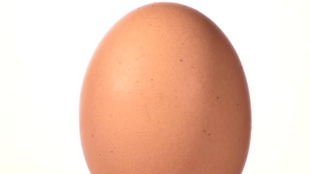 Egg rotates against white - HD video