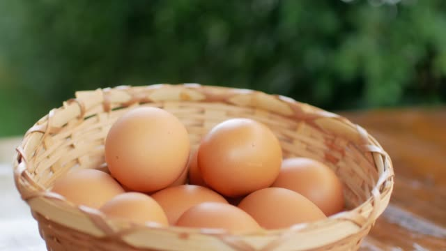 Eggs in the basket video