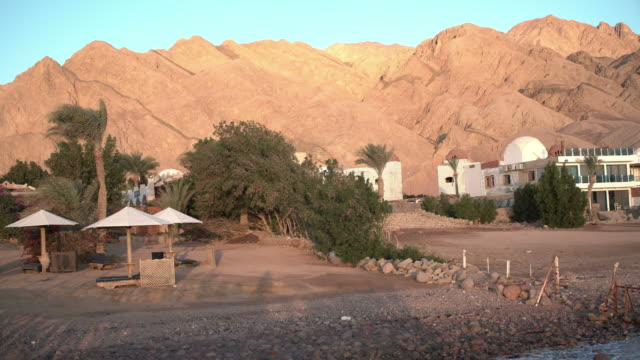 egypt dahab palm trees and sea - souk video stock e b–roll