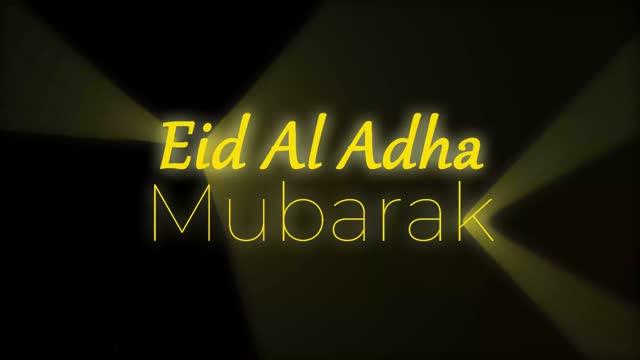 eid al adha - eid ul adha bildbanksvideor och videomaterial från bakom kulisserna