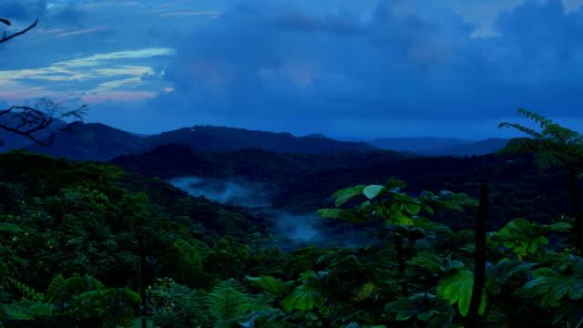 El Yunque National Forest, Puerto Rico El Yunque National Forest, Puerto Rico, Travel concepts puerto rico stock videos & royalty-free footage