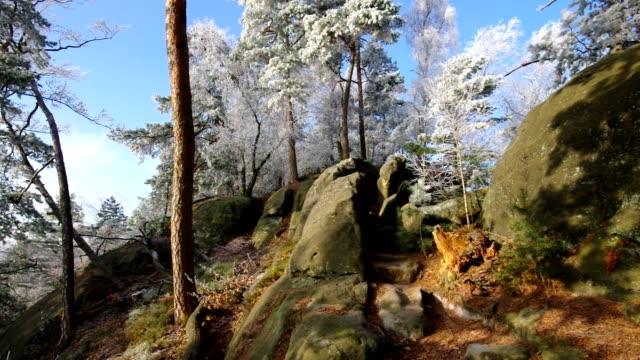 Elbe sandstone mountains in winter and hoarfrost, mountain Teichstein video