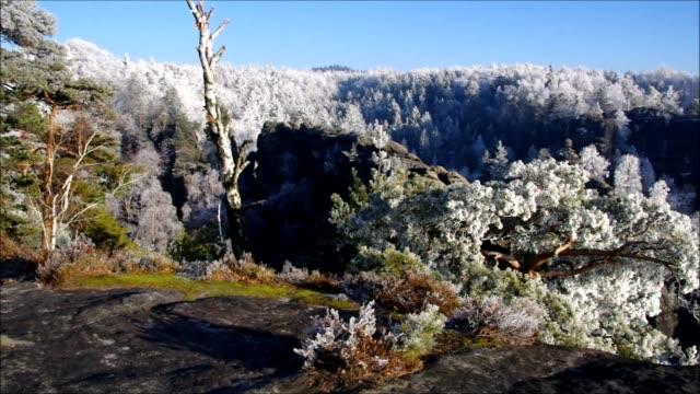 Elbe sandstone mountains in winter and hoarfrost, mountain Winterberg video