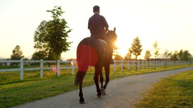 close up: elder horseman horseback riding an enjoying time at sunrise - cavalla video stock e b–roll