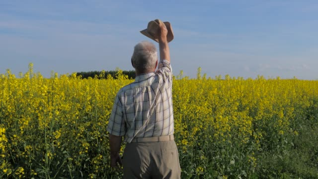 Elderly and white-haired farmer in a field, waving his arms and hat in greeting. video