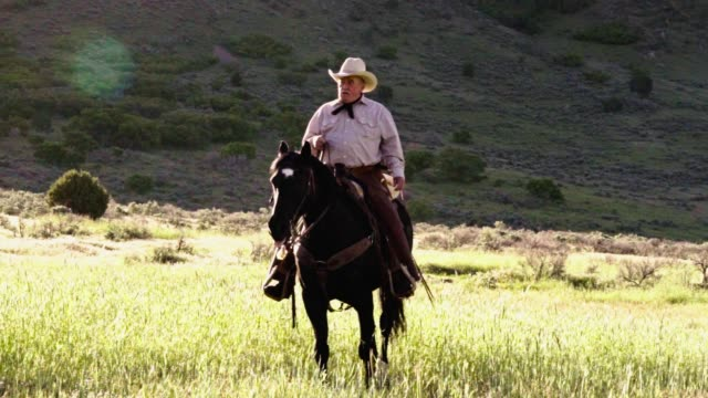 elderly cowboy on his horse in the mountains with a sunburst behind him - только один мужчина стоковые видео и кадры b-roll