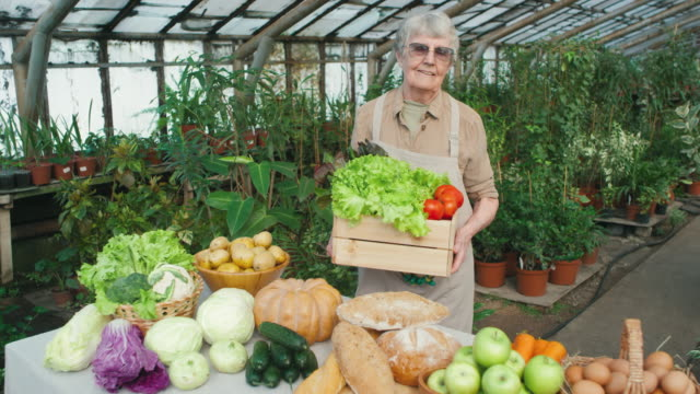 elderly female farmer posing in greenhouse - agricoltrice video stock e b–roll