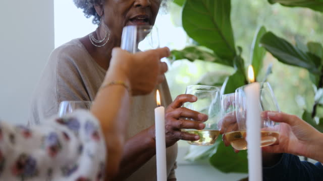 Elderly friends toasting wineglasses at party