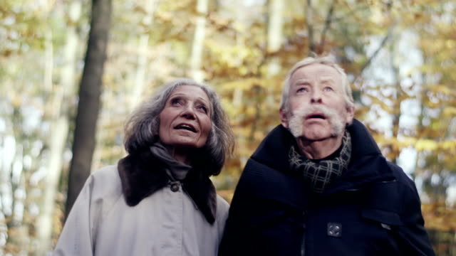 Elderly People walking through forest video