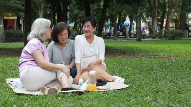 Elderly Taiwanese Friends Having Picnic Together
