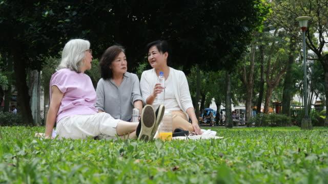 Elderly Taiwanese Ladies Having Picnic At Park