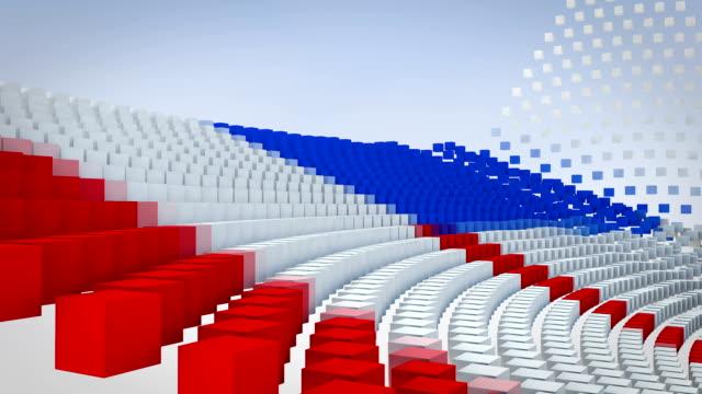 Elecciones al Parlamento de color - vídeo