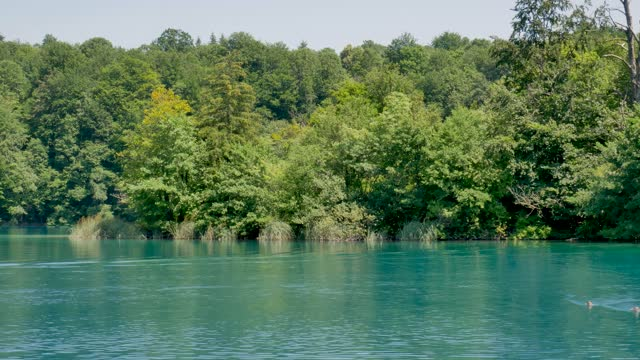 Electric boat navigating Plitvice Lakes,National Park in Croatia, UNESCO video