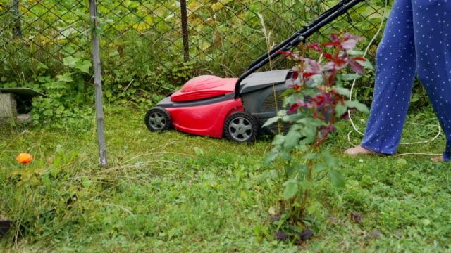 Tondeuse à gazon électrique coupe l'herbe. - Vidéo