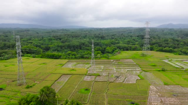 Electrical Transmission line High-Voltage tower in the rice field