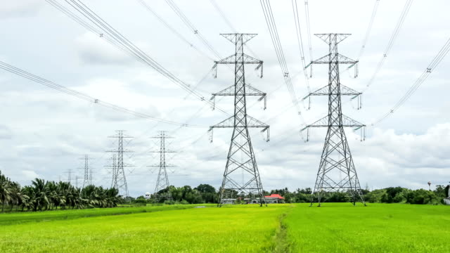 electricity high voltage power pylon in paddy field video
