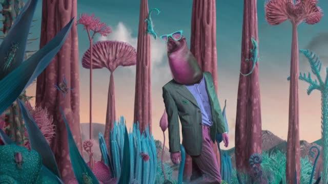 elegance seal in surreal nature - сюрреалистический стоковые видео и кадры b-roll
