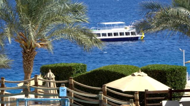 Elegant und anmutig Motorboot im Gange. Yacht und Tropic Island – Video
